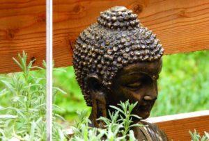 buddhaholz
